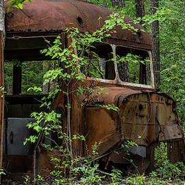 Time to Catch the Bus by Paige Brown