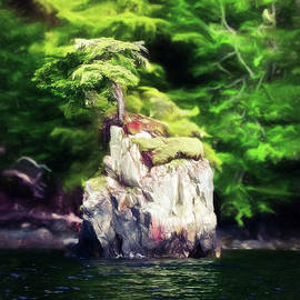 Tiny Island Inside Passage Alaska by Bellesouth Studio
