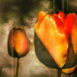 Tiptoe by Jim Love
