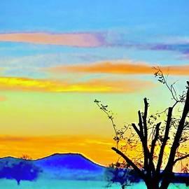 TJs Ranch by David Cullen