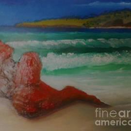 Toby's beach 2010 by Julie Grimshaw