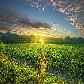 Today Only Happens Once by Phil Koch