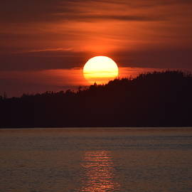 Tofino Sunset by Marta Kazmierska