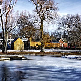 Toronto Island In Winter by Maria Faria Rodrigues