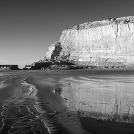 Torrey Pines Low Tide Monochrome by William Dunigan
