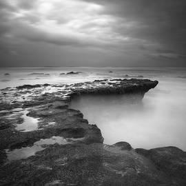 Torrey Pines Monochrome Storm by William Dunigan