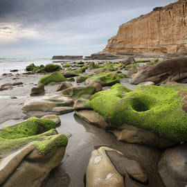 Torrey Pines Rocks on the Beach by William Dunigan
