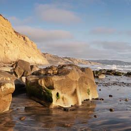 Torrey Pines State Beach Panorama One by William Dunigan