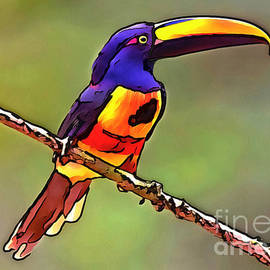 Toucan collection - 1 by Sergey Lukashin