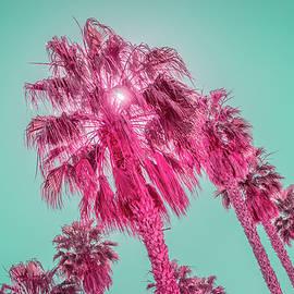 Tourmaline and Turquoise - Jewel Colored Palm Trees - New Variant by Georgia Mizuleva