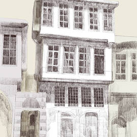 Traditional Houses in Damascus, Syria by Tareq Razzouk