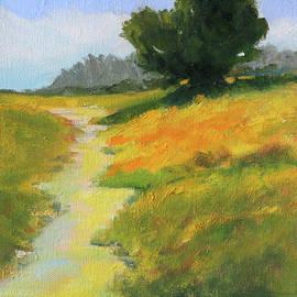 Trail to the Beach by Nancy Merkle