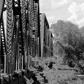 Train Bridge 8809 by Larry Jost