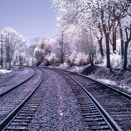 Train Tracks - Infrared Color by Anthony M Davis
