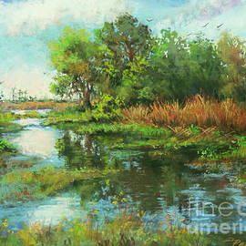 Tranquil in the Estuary - Louisiana Marshland by Dianne Parks