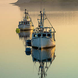 Tranquil Morning Mist by Marty Saccone