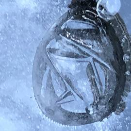 Trapped in Ice by Bill Lee