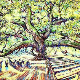 Treaty Oak #3 by Viktor Lazarev