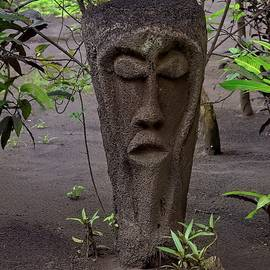Tree Fern Grade Statue Vanuatu by Heidi Fickinger
