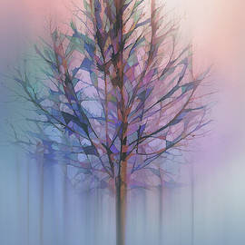 Tree in Pastel Fog by Terry Davis