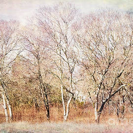 Trees of Crescent Bend by Gary Richards