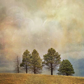 Trees on a Hill Under an Imaginary Sky by Mary Lee Dereske