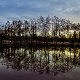 Treoes Pond in Wales at Sunrise by Stephen Jenkins