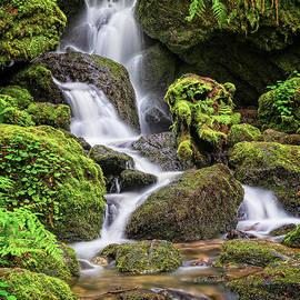 Trillium Falls by Charles Dobbs