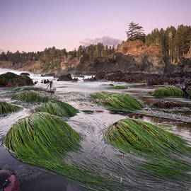 Trinidad State Beach Low Tide by William Dunigan