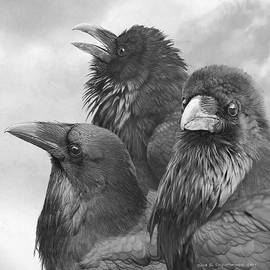 Trio Of Ravens by R christopher Vest