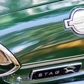 Triumph Stag Closeup Details by Arro FineArt