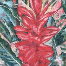 Tropical Red Ginger by Helen Sviderskis