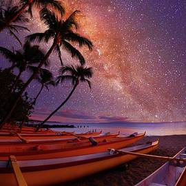 Tropical Stars by James Roemmling