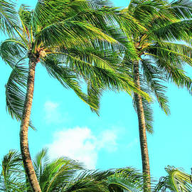 Tropical State of Mind by Roselynne Broussard