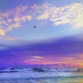 Tropical Sunrise - New Smyrna Beach Florida by Joann Vitali