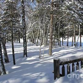 Truly a Winter Wonderland  by Ann Brown