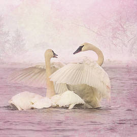 Trumpeter Swan Hug by Patti Deters