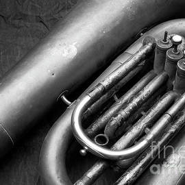 Tuba-8774B by Timothy Bischoff