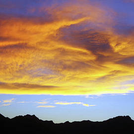 Tucson Mountains Under Blue And Gold by Douglas Taylor