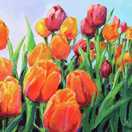 Tulip Parade by Karen Ilari