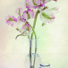 Tulips in a Glass Vase by Ann Garrett