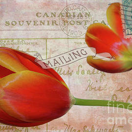 Tulips on Vintage 1905 Postcard by Nina Silver