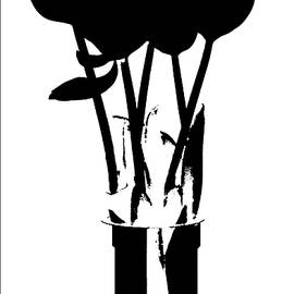 Tulips - Silhouette by VIVA Anderson