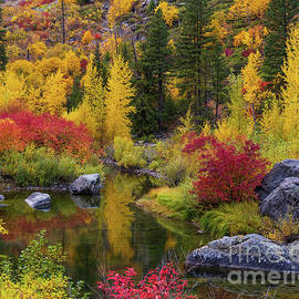 Tumwater Canyon Fall Colors Pool by Mike Reid