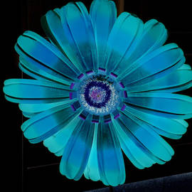Turquoise Flower by Jean Merrill