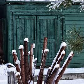 Turquoise Garage by Dana Hardy