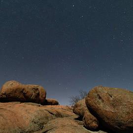 Turtle under the stars by Tyler Schlitt
