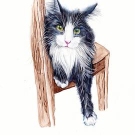 Tuxedo Cat - That Look by Debra Hall