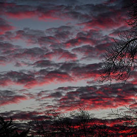 Twilight Fire by Mick Anderson