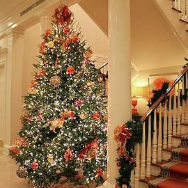 Twinkling Christmas Lights by Cynthia Guinn